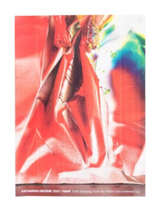 Katharina Grosse poster (5012169)