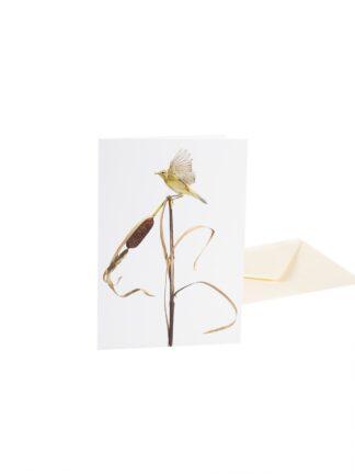 Korttinippu, 5 erilaista Sanna Kanniston lintukorttia (5012187)